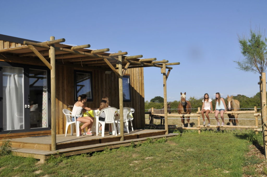 photo camping le petit paris en vendee chevaux