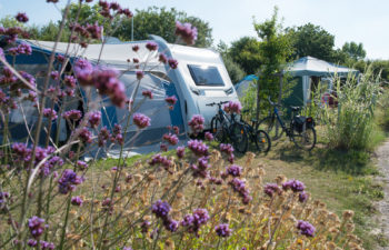 photo camping le petit paris en vendee emplacement