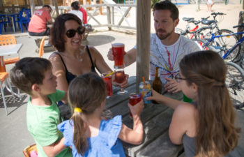 photo camping le petit paris en vendee bar
